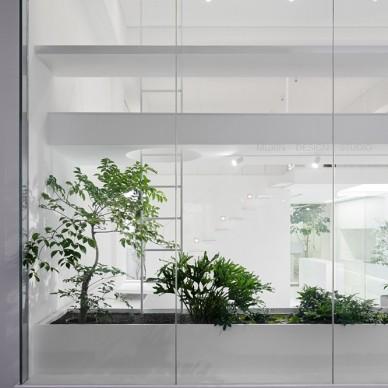 拥有众多花园的办公空间_3646901