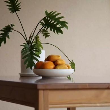 理想的生活:前院养花,后院种菜_3750390