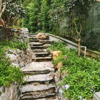 别墅-景观设计_3870529