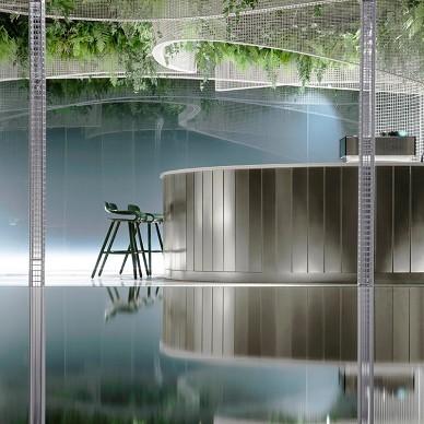 水上的白色花园_1603440218_4296317