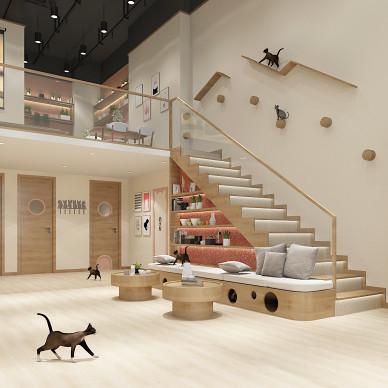 淄博猫咖设计宠物店宠物猫狗猫咪乐园设计_1622631255_4457798